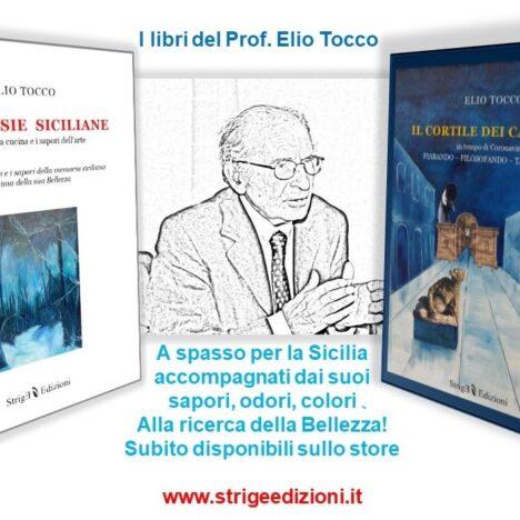 """""""Il cortile dei cazzinali"""" di Elio Tocco. Evento on-line"""